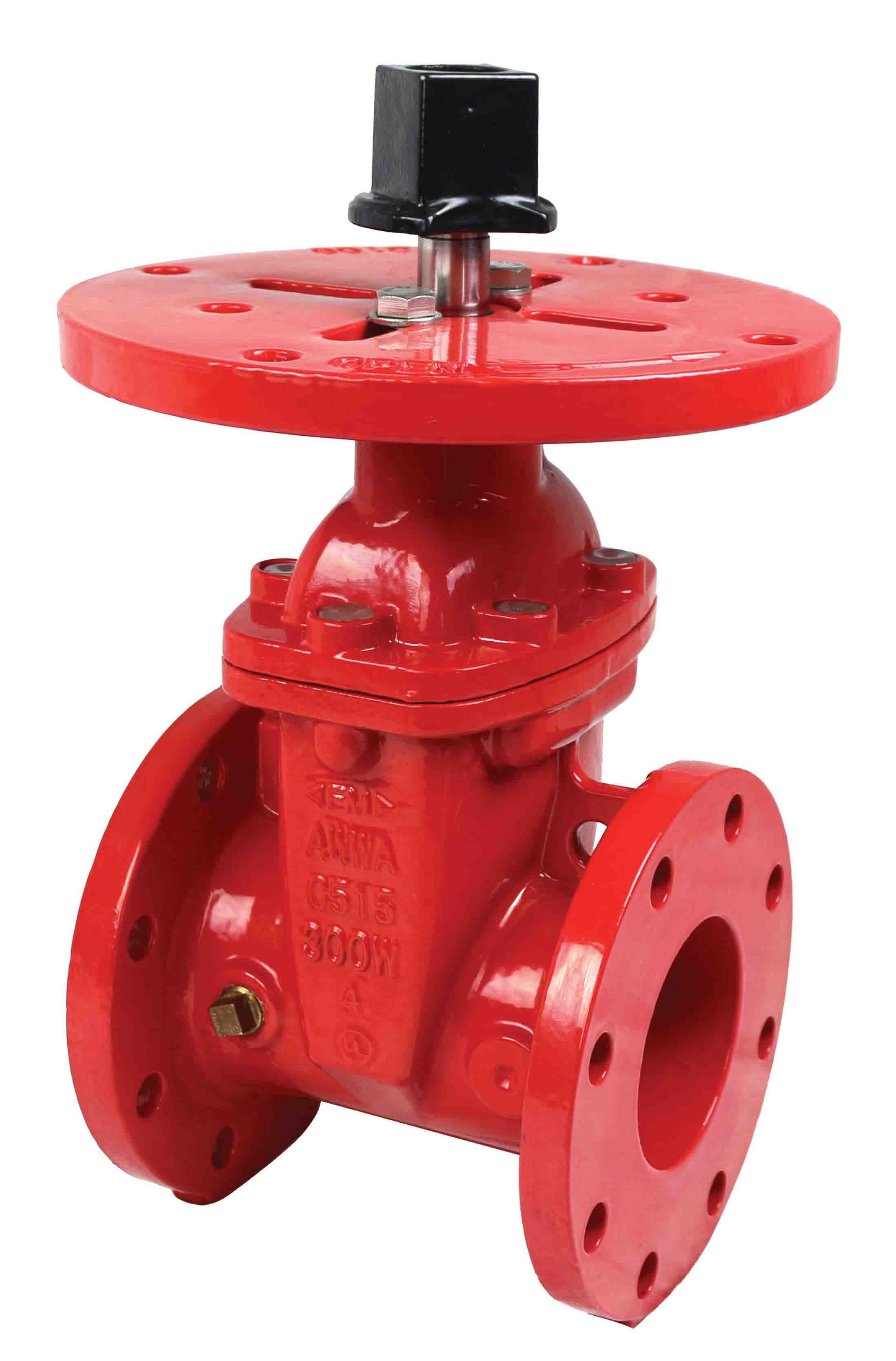 flanged, NRS, gate valve - Kinger Industry Inc
